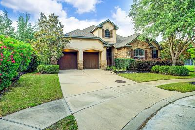 Katy Single Family Home For Sale: 8106 Cabrillo Landing Court