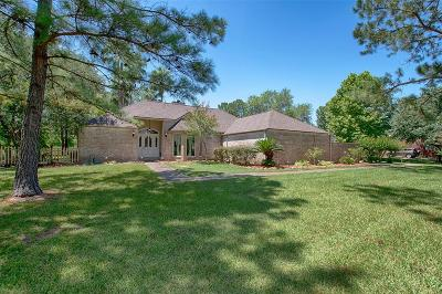Friendswood Single Family Home For Sale: 606 Sun Park Drive