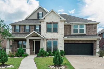 Pearland Single Family Home For Sale: 3007 Rocky Point Drive