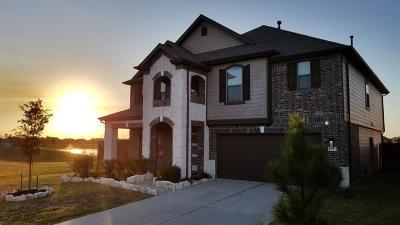 Katy Single Family Home For Sale: 4407 S Vineyard Meadow Lane