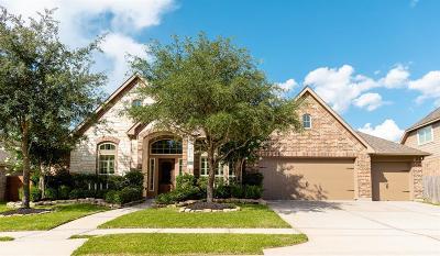 Single Family Home For Sale: 28106 Jillian Oaks Lane