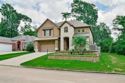 Montgomery Single Family Home For Sale: 217 Blue Hill Drive