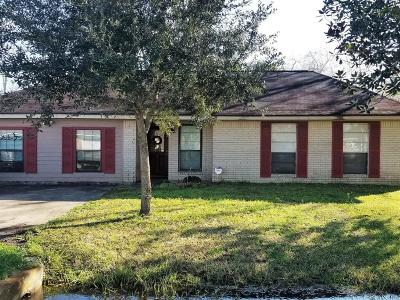 Brazoria Single Family Home For Sale: 2631 County Road 769a