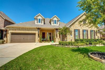 Single Family Home For Sale: 9810 Reston River Lane