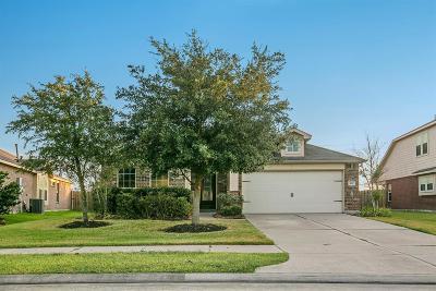Rosenberg Single Family Home For Sale: 603 Honeysuckle Vine Drive