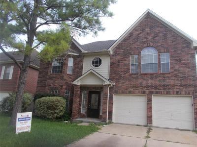 Houston Single Family Home For Sale: 13026 Skymeadow Drive