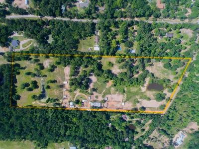 Conroe Farm & Ranch For Sale: 14638 Perry Road