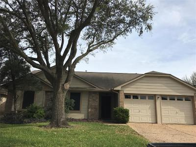 Katy Single Family Home For Sale: 19414 Haystream Drive