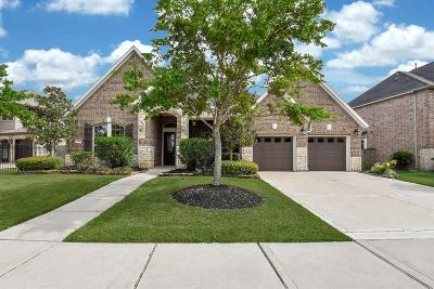 Katy Single Family Home For Sale: 28319 Green Forest Bluff Trail