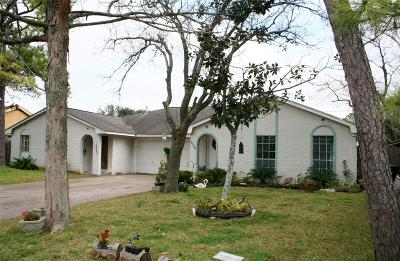 Houston Multi Family Home For Sale: 14529/14527 Buffalo Speedway
