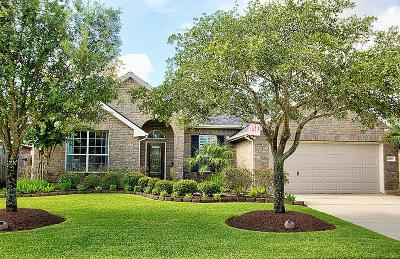 Katy Single Family Home For Sale: 28019 Rusty Hawthorne Drive