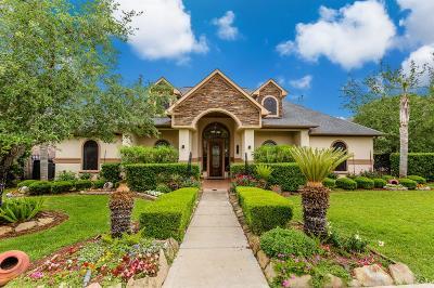 Missouri City Single Family Home For Sale: 2819 Peninsulas Drive