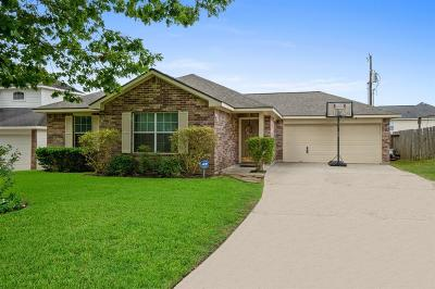 Willis Single Family Home For Sale: 13751 Running Bear Drive
