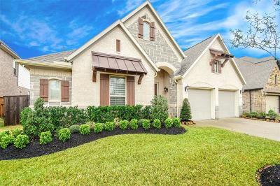 Pearland Single Family Home For Sale: 3610 Trinity Rose Lane