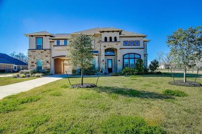 Missouri City Single Family Home For Sale: 5202 Beekman Drive
