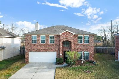 Tomball Single Family Home For Sale: 18002 Platinum Springs Drive