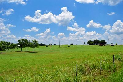 Schulenburg TX Farm & Ranch For Sale: $126,000