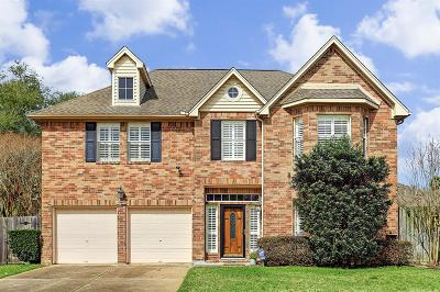 Sugar Land Single Family Home For Sale: 16447 Flint Run Way