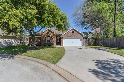 Cypress Single Family Home For Sale: 11002 Creekline Meadow Court