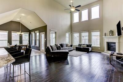 Houston Single Family Home For Sale: 15806 Graham Spring Lane