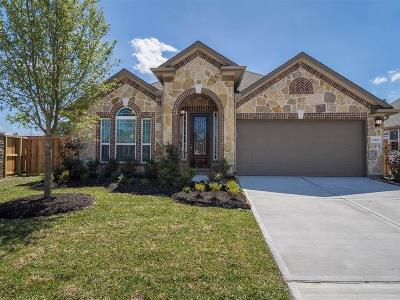 Tomball Single Family Home For Sale: 12103 Brighton Brook Lane