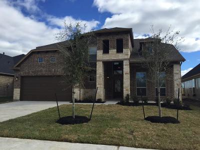 Conroe Single Family Home For Sale: 10175 North Whimbrel Circle