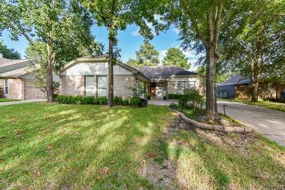 Tomball Single Family Home For Sale: 15530 Lago Villa Drive