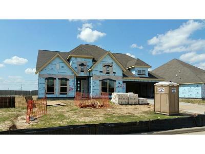 Katy Single Family Home For Sale: 2415 Banyon Gulch Lane