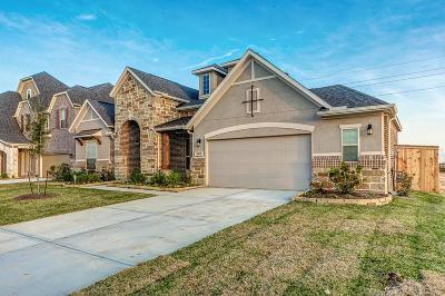 Katy Single Family Home For Sale: 1803 Carriage Oaks