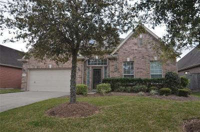 Pearland Single Family Home For Sale: 2508 S Venice Drive