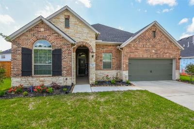 Conroe Single Family Home For Sale: 305 Park Terrace Drive