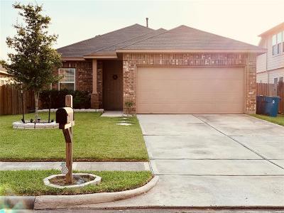 Rosenberg Single Family Home For Sale: 2122 Hackberry Bank Lane