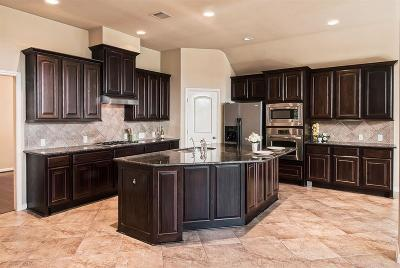 Sugar Land Single Family Home For Sale: 5611 Plum Point Court
