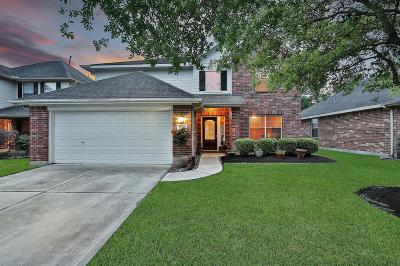 Porter Single Family Home For Sale: 21364 Terreton Springs Drive