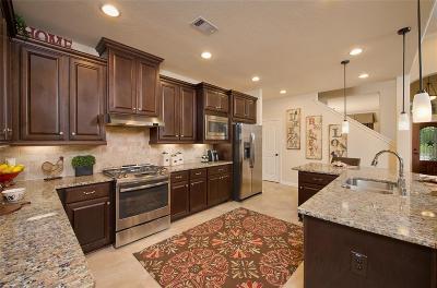 Spring Single Family Home For Sale: 19603 Slate Hills Lane