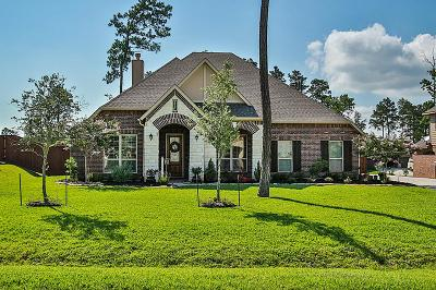 Magnolia Single Family Home For Sale: 40393 Mostyn Drive