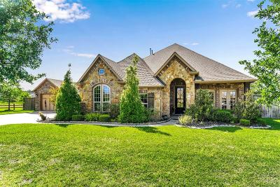 Single Family Home For Sale: 40707 Manor Drive