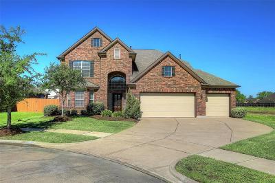 League City Single Family Home For Sale: 941 Francesca Court