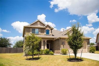 Houston Single Family Home For Sale: 19531 Shelby Ridge Lane