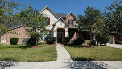 Sugar Land Single Family Home For Sale: 4310 Village Forest Drive