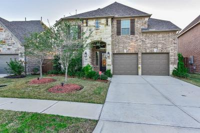 Webster Single Family Home For Sale: 518 Pedernales Street