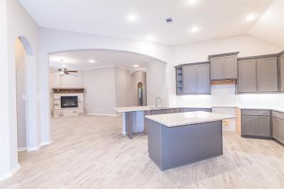Montgomery Single Family Home For Sale: 208 Capriccio