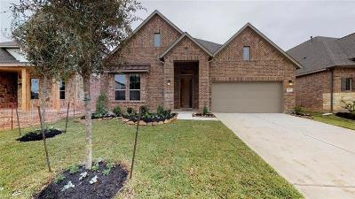 Lakes Of Savannah Single Family Home For Sale: 4911 Gingerwood Trace