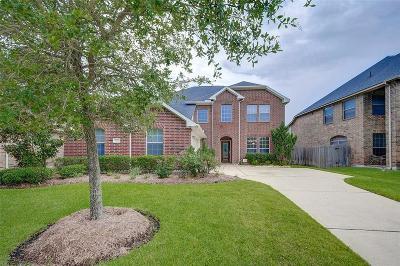 Katy Single Family Home For Sale: 9727 Eagle Peak Court