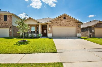 Tomball Single Family Home For Sale: 20119 Galena Falls Drive