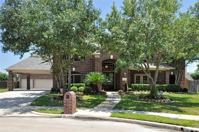 Tomball Single Family Home For Sale: 11502 Hidden Grove Court