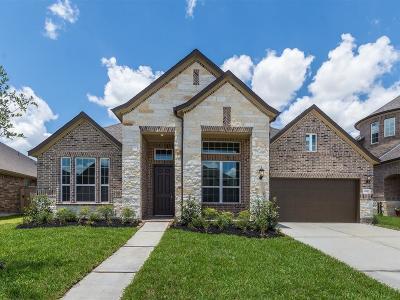 Richmond Single Family Home For Sale: 11227 Morningside Lake Lane