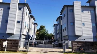 Houston Single Family Home For Sale: 2903 Blodgett Street
