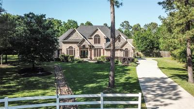 Magnolia Single Family Home For Sale: 33218 E Border Oak Park