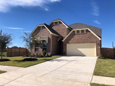 Katy Single Family Home For Sale: 2730 Brighton Willow Way